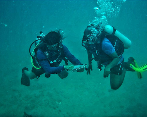 Advanced Open Water Dive course in Havelock Islands, Andaman | | PADI certification courses | Learn Scuba Diving