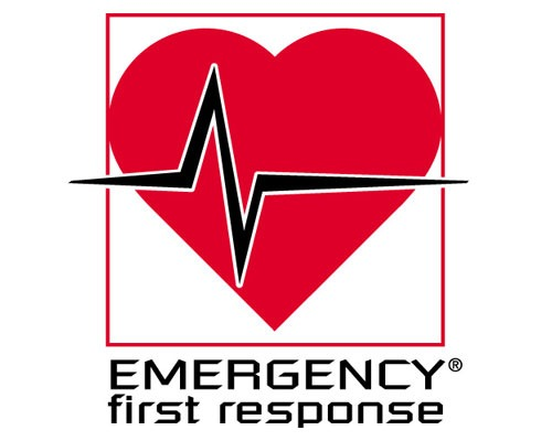 Emergency First Response (EFR) course in Havelock Islands, Andaman | | PADI certification courses | Learn Scuba Diving