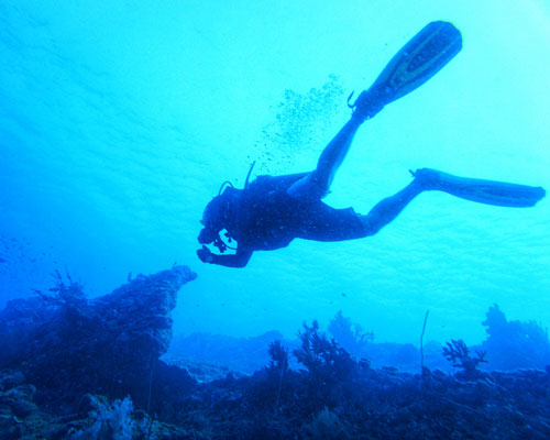 Adventure Diver course in Havelock Islands, Andaman | | PADI certification courses | Learn Scuba Diving